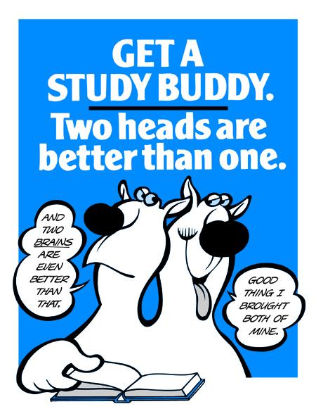 Get A Study Buddy
