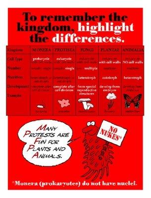 Kingdom Differences
