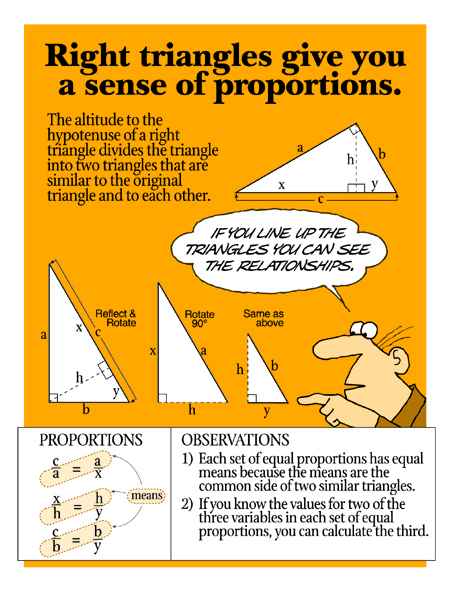 Similar Proportions in Right Triangles