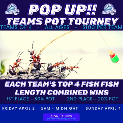 POP UP EASTER TEAMS POT TOURNEY - ONE TEAM