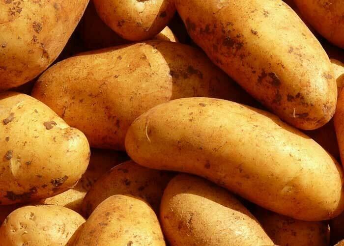 Patates chair ferme Bio - 10kg