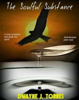The Soulful Substance - by Dwayne J. Torres - paperback