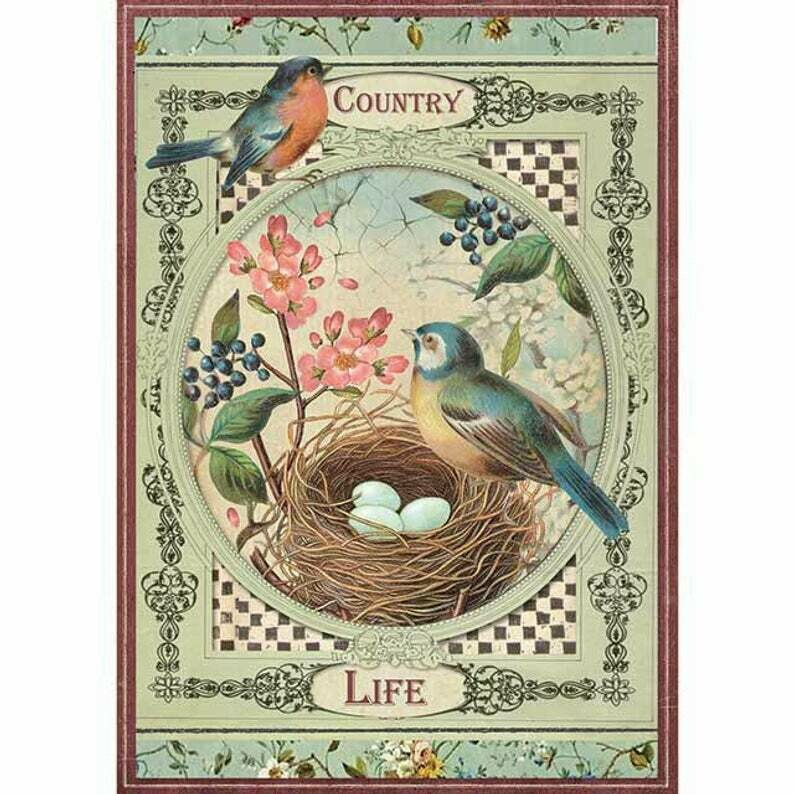 Country Life Birds - A4 -Stamperia Rice Paper