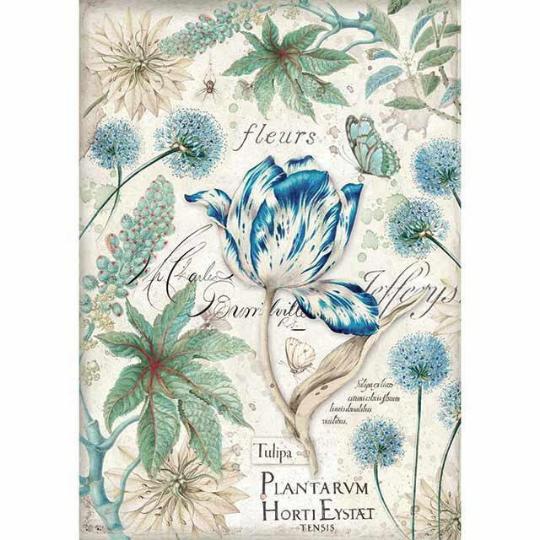 Blue Tulip - A4 -Stamperia Rice Paper