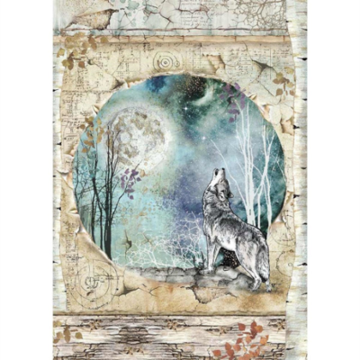 Wolf and Moon A4 - Stamperia Cosmos