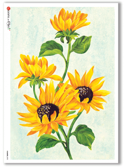 Flowers-0092 - A5 - Paper Designs Rice Paper