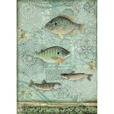 Forest Fish A4 Rice Paper - Stamperia