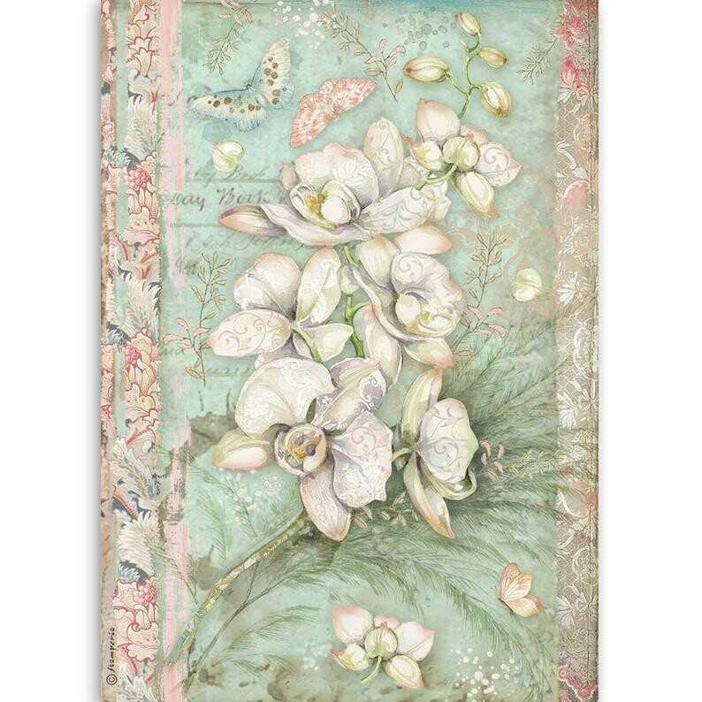 White Orchid - Orchids and Cats - A4 Rice Paper - Stamperia