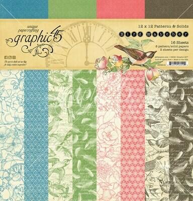 Bird Watcher 12x12 Patterns and Solids - Graphic 45
