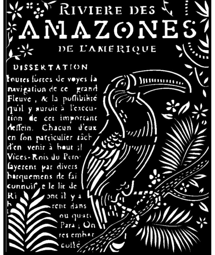 Toucan Stencil - Amazonia Collection - Stamperia