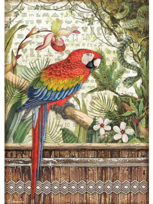 Parrot A4 Rice Paper - Amazonia Collection - Stamperia
