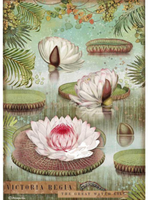 Water Lily A4 Rice Paper - Amazonia Collection - Stamperia
