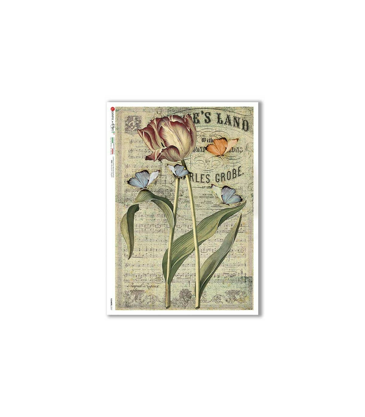 Flowers-0357 - A4 Rice Paper - Paper Designs