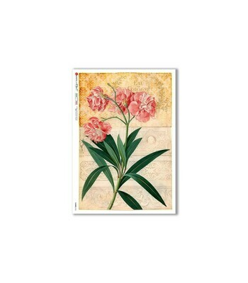 Flowers-0355 - A4 Rice Paper - Paper Designs