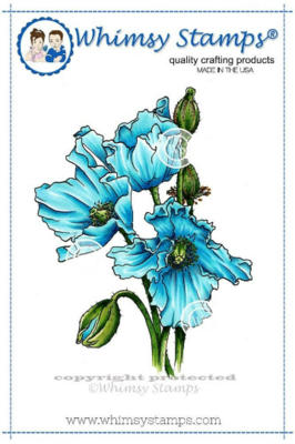 Himalayan Poppy - Whimsy Stamps