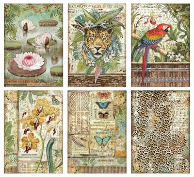 Amazonia Collection A4 - Stamperia