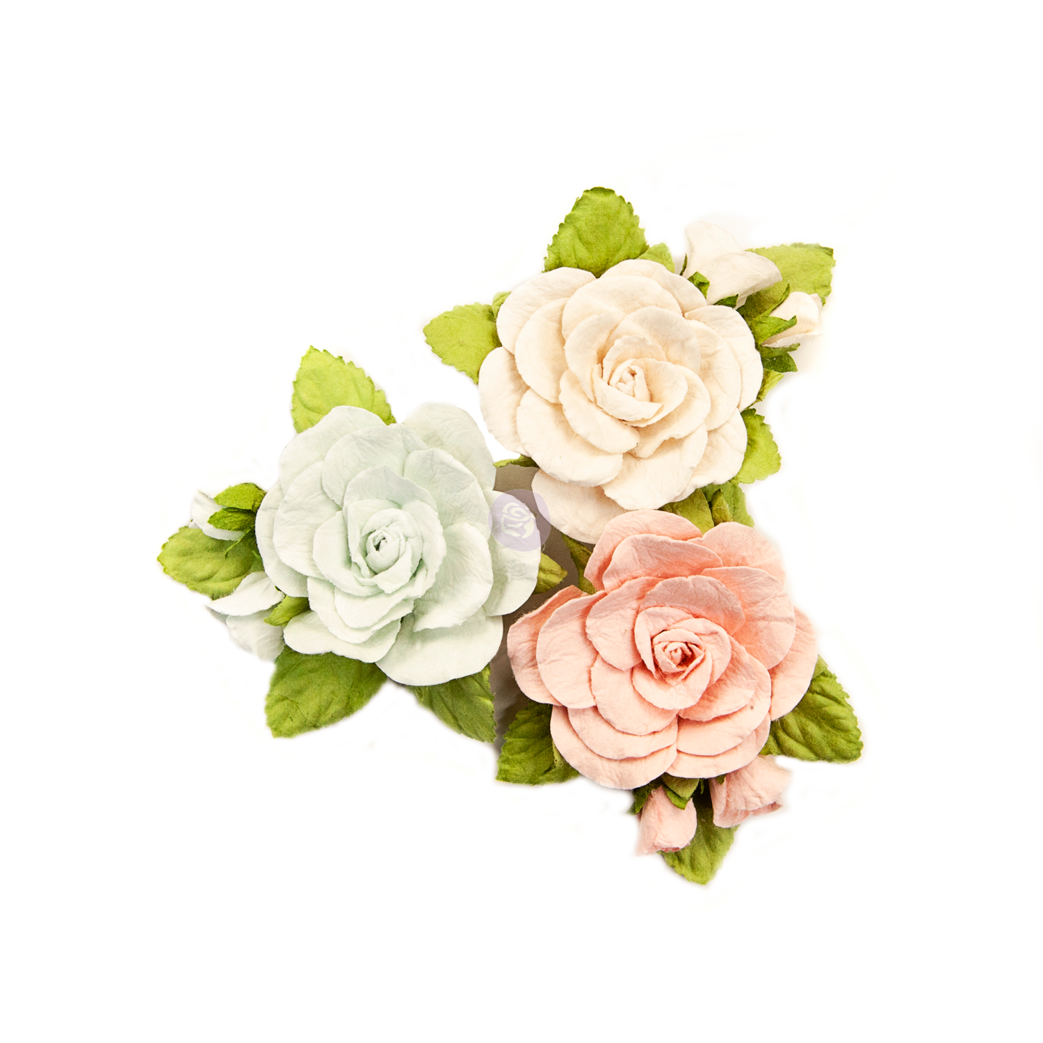 Sweet Roses - Poetic Rose Flowers - Prima