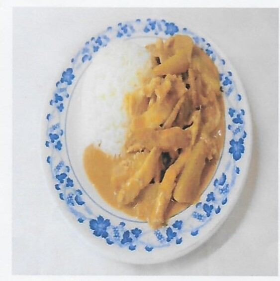 Riz avec poulet au curry massaman / Rice with massaman curry with chicken