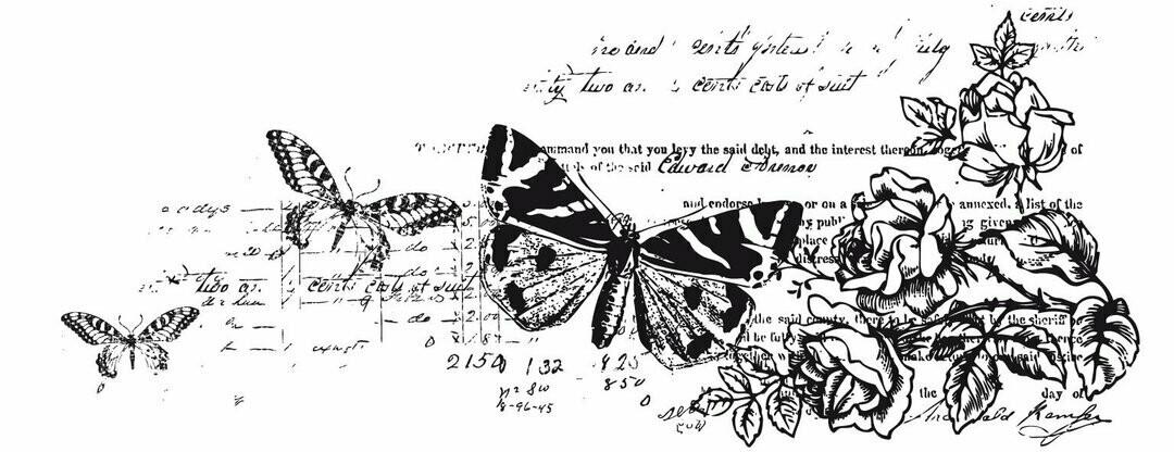 Kaisercraft Texture Clear Stamp Botanical