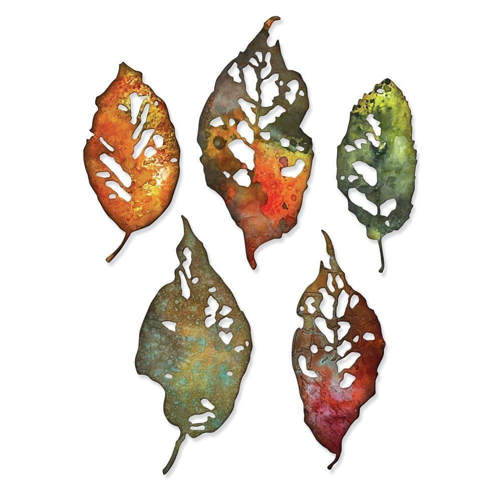 Tim Holtz Sizzix Thinlits Dies Leaf Fragments 5/pkg