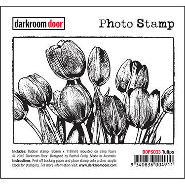 Darkroom Door Photo Stamp - Assorted
