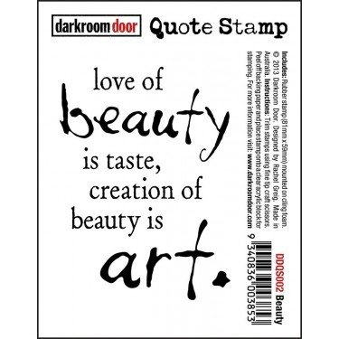Darkroom Door Quote Stamp - Assorted