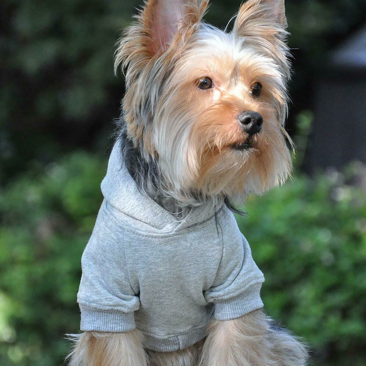 Flex-Fit Dog Hoodie (Grey)