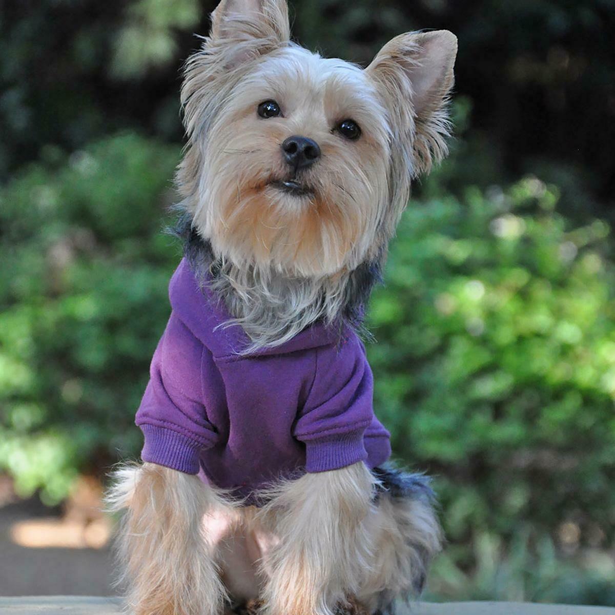 Flex-Fit Dog Hoodie (Purple)