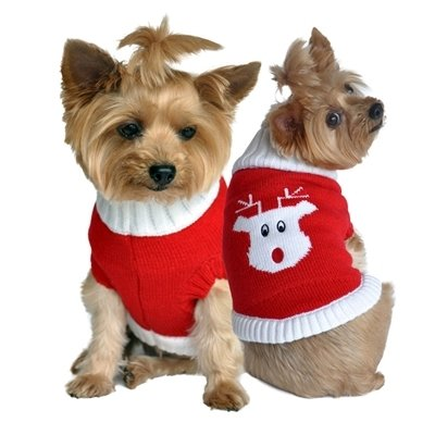 Combed Cotton Holiday Sweater (Red Rudolph)