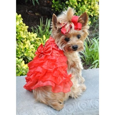Holiday Dog Harness Dress (Red Satin)