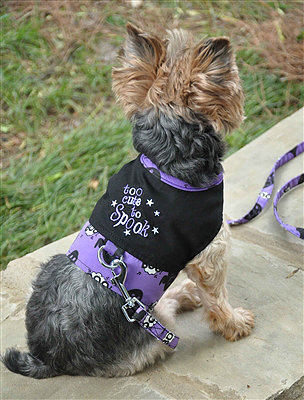 """""""Too Cute to Spook"""" Harness"""