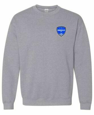 Adult Commonwealth SC Left Chest Design Crewneck Sweatshirt (CSC)