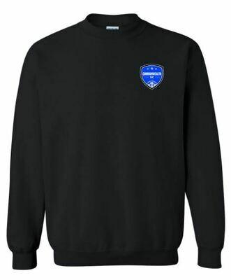 Youth Commonwealth SC Left Chest Design Crewneck Sweatshirt (CSC)