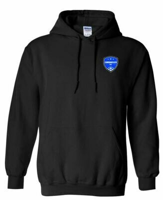 Youth Commonwealth SC Left Chest Design Hooded Sweatshirt (CSC)