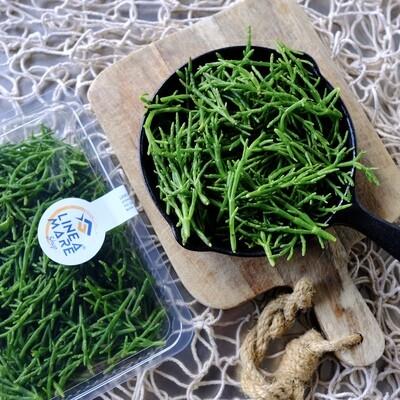 Salicornia fresca - Confezione da 200gr