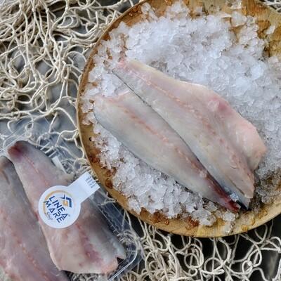 Filetti di Branzino All. Mar Adriatico - Confezione da N.2 filetti