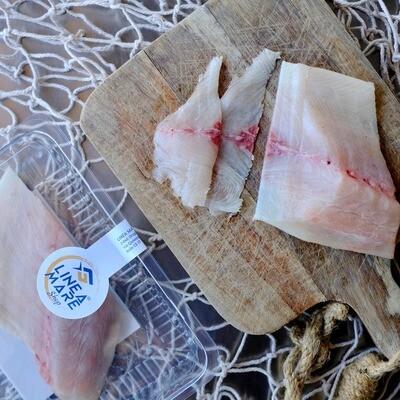 Filetto di Ricciola Oceanica Fresca Allevata - Porzione da 170-210gr
