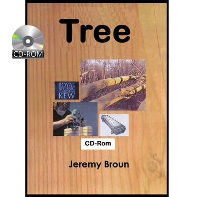Tree - The story of a tree -  for young children - interactive CD-Rom