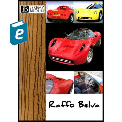 Raffo Belva sports car build - a free online video integrated Ebook (E-manual) that plots the re-design and re-build of this unique and rare marque.