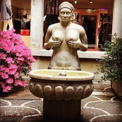 Treviso in Arte