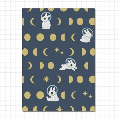 Sticker Book: Lunar