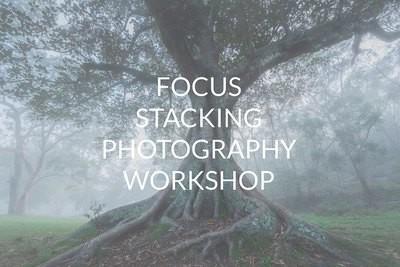 Focus Stacking Workshop