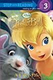 A Fairy Tale (Disney Fairies, Step Into Reading)