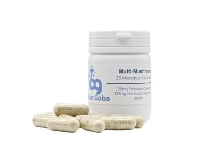 Multi Mushroom Microdose