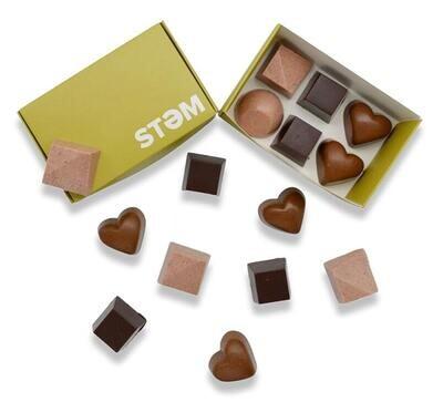 STEM 1/2 Gram Mushroom Chocolates (6 pack)