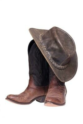 Single Filled Pen - Cowboy