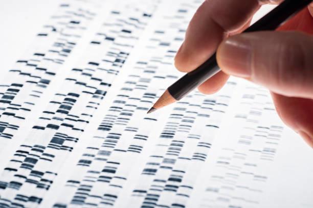 DNA Test - Mane Sample