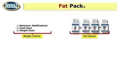 Female - 3 Month Fat Attack