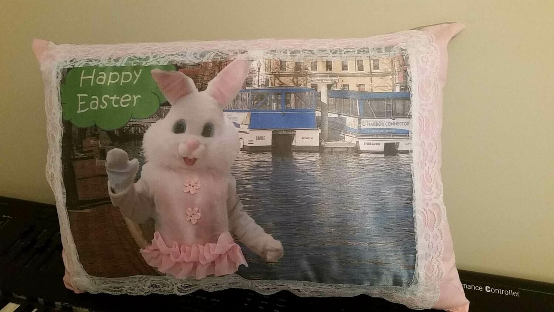 Easter Bunny/Springtime pillow 011