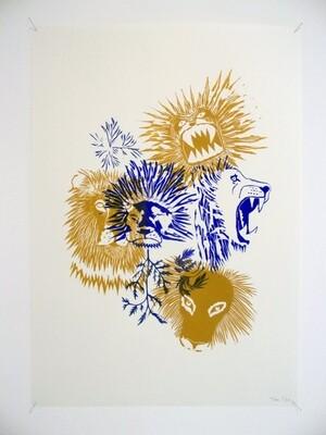 Lions, Fabien TABUR